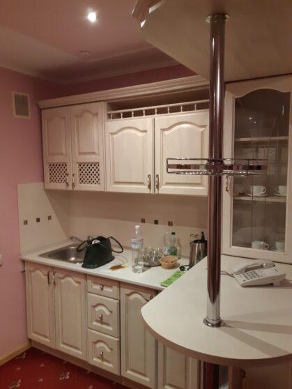 Кухня в номере гостиницы Тернополь
