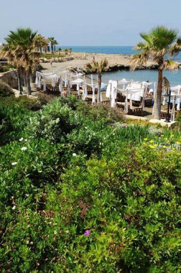 Пляж отеля Elysium, Пафос, Кипр