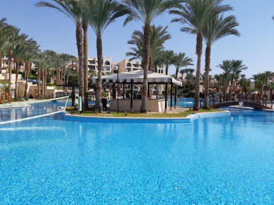 Главный бассейн отеля Grand Rotana Resort and Spa