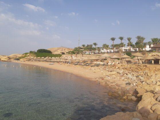 Пляж отеля Hyatt Regency Sharm