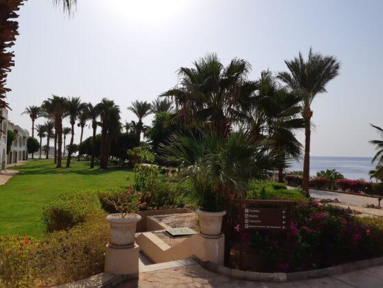 Туннель на пляж отеля Hyatt Regency Sharm