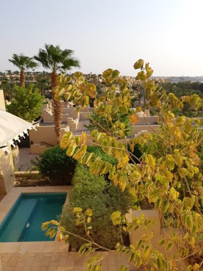 Private pool at Foour Seasons Resort Sharm el Sheikh