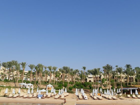 Пляж отеля Four Seasons Resort Sharm el Sheikh